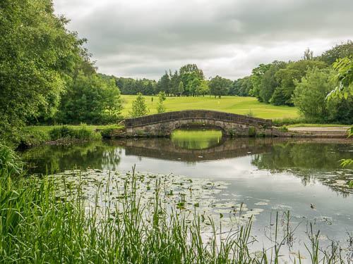 Attractive Bridge By Golf Course